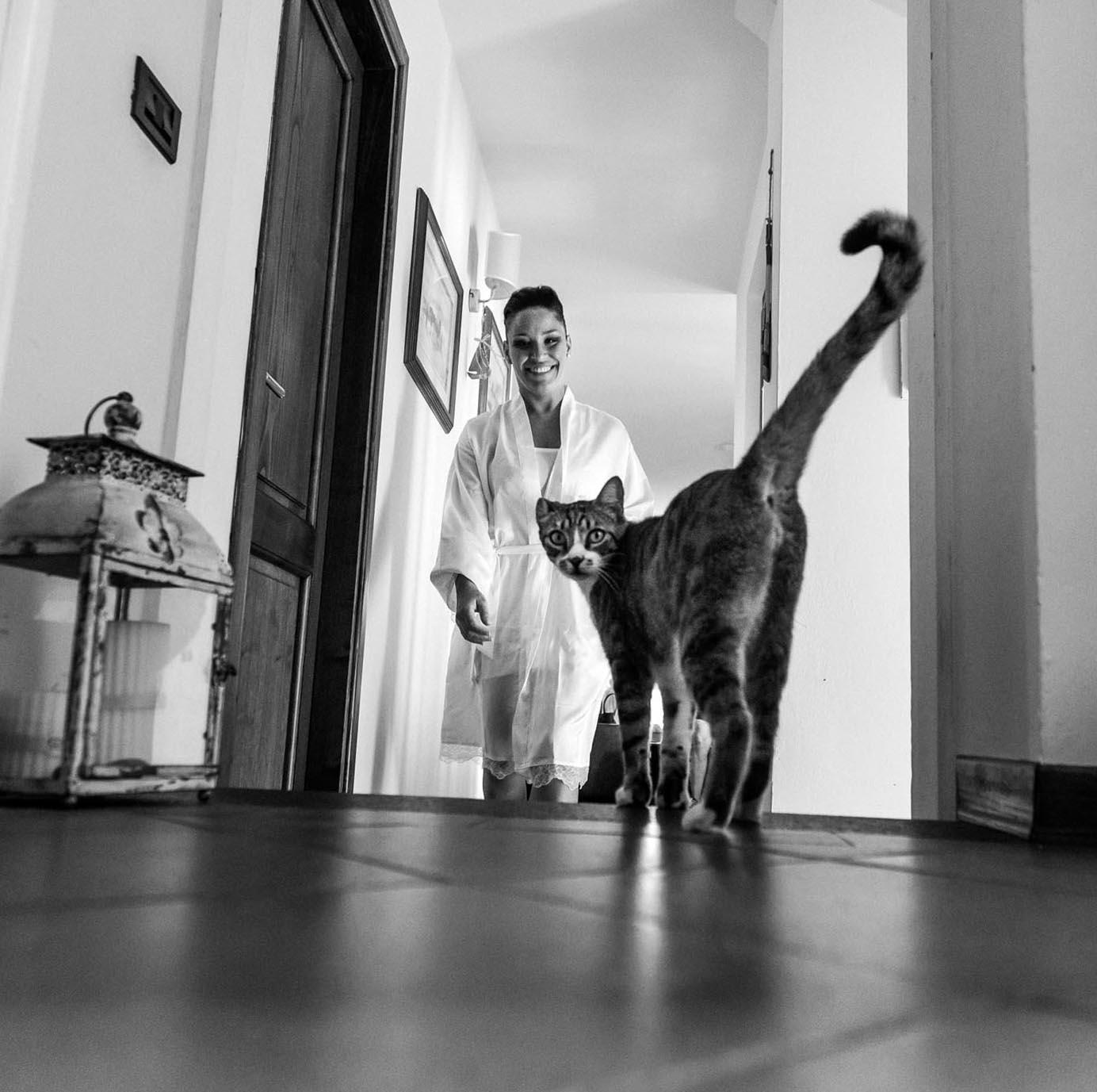 fotografo di matrimonio a pistoia preparativi della sposa con gatto